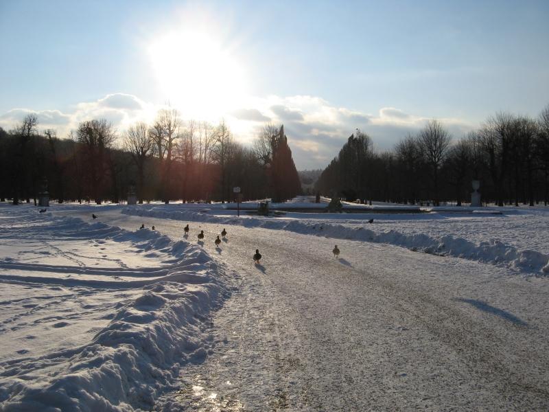 Wintergeschichte Teil 11