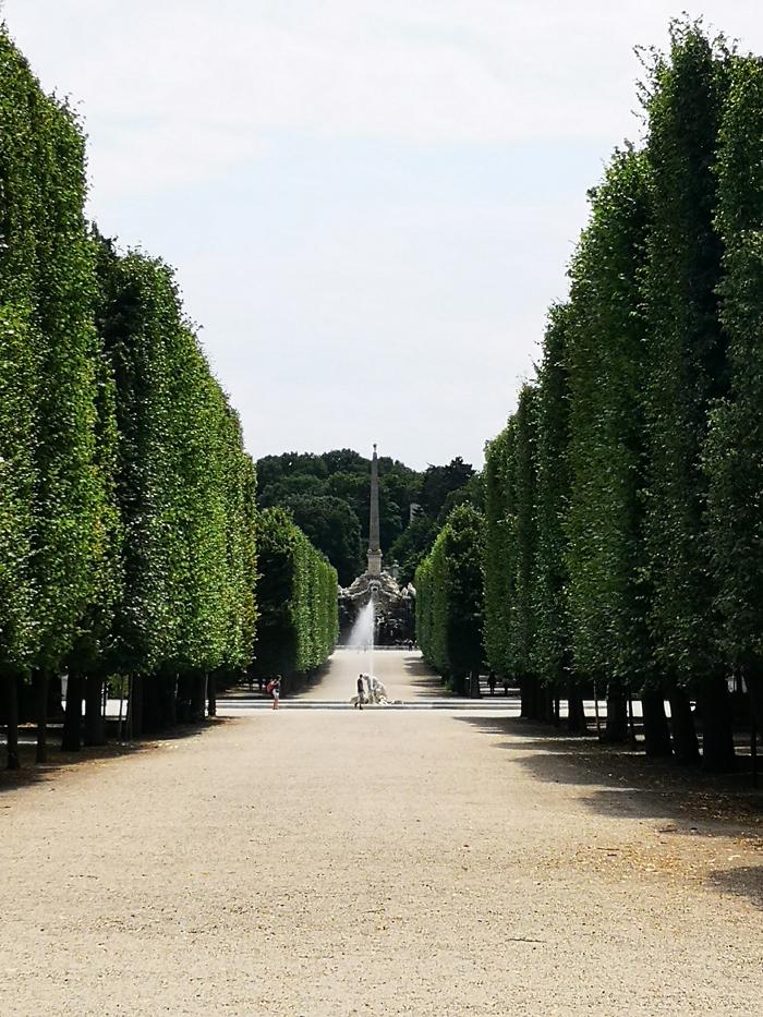 Dieses Bild hat ein leeres Alt-Attribut. Der Dateiname ist Garten_Schönbrunn.jpg
